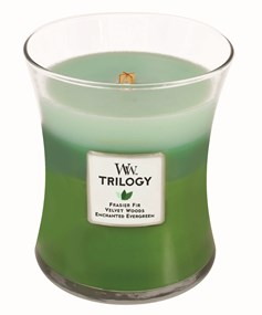 Woodwick Świeca Trilogy średnia-Forest Walk (Frasier Fir  Velvet Woods  Enchanted Evergreen)
